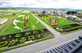 【2020年度中止】田舎館村 田植え体験ツアー