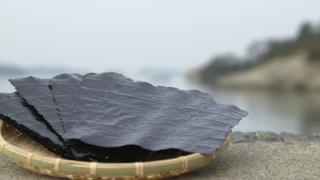 東松島の海苔
