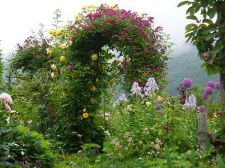 蔵王ペンション村オープンガーデン ~山の春から初夏の庭~