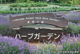 置賜公園ハーブガーデン