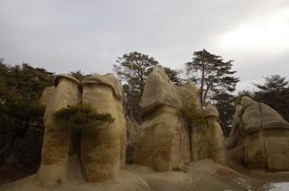 浄土松公園まつり
