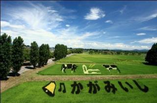 2012田んぼアート「牧場の風景」