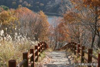 母畑湖畔遊歩道