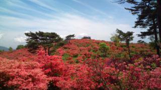 高柴山(福島県小野町)