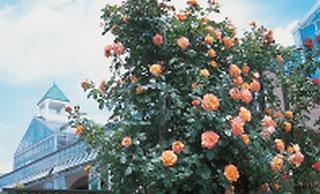 那須花と体験の森
