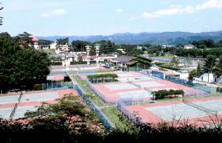 グリーンウッドテニスランチ