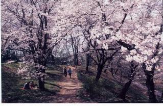 雉岡城跡公園