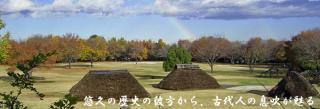 水子貝塚公園・資料館