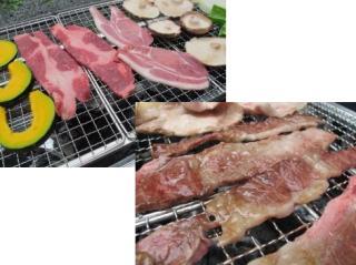 Michi-no-eki fruit tree park ashigakubo barbecue ground