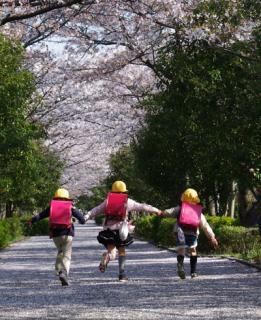 杉戸高野台さくら祭