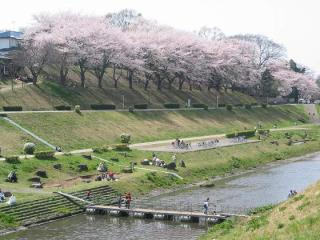 運河在水邊公園