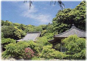 龍福寺の森