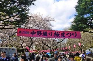 中野通り桜まつり