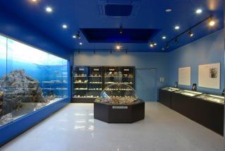 Manazuru municipality Endo shellfish Museum