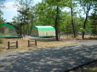 海辺の森キャンプ場