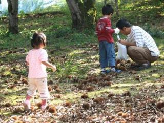 今井観光栗園