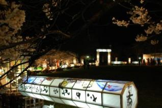 Mano Park Sakura Festival★15606ba2210124513