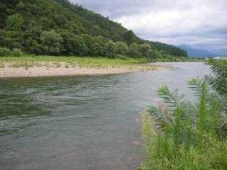 魚野川【釣り場】