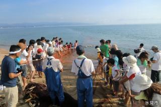 地引き網(おにぎり・大漁鍋付き)