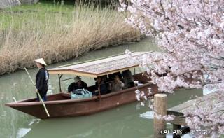 城下町大聖寺川流し舟