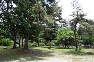 鹿留オートキャンプ場