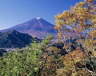 高川山ハイキングコース