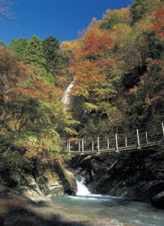大柳川渓谷ハイキングコース