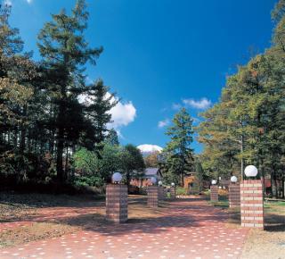 山中湖文学の森公園
