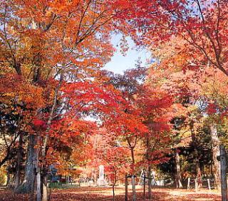 県立出早公園