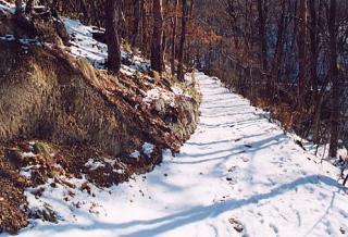 五里ヶ峰登山道