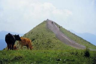 飯盛山ハイキングコース