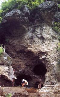 栃原岩陰遺跡
