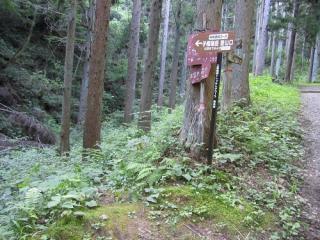 子檀嶺岳村松西洞登山口