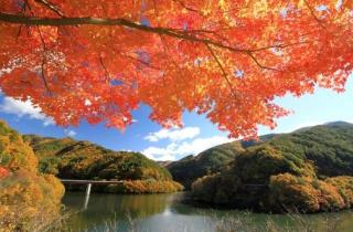 もみじ湖(箕輪ダム)