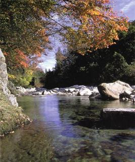 売木川渓谷