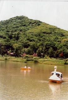 茶臼山高原(長野県根羽村)