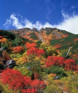 御嶽山八合目