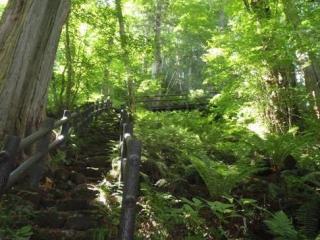 御嶽山麓 美林・滝めぐりコース