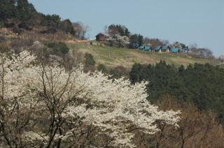 生坂高津屋森林公園から農村公園