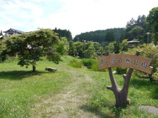 鷹の窪自然公園