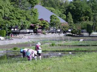 光輪寺(長野県朝日村)