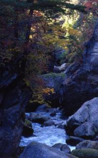差切峡の紅葉