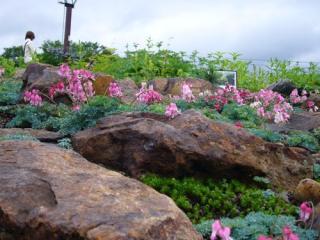 白馬五竜高山植物園・エスカルプラザ