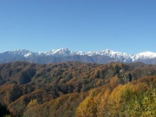 桐山の紅葉