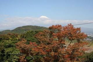 野田山ハイキングコース
