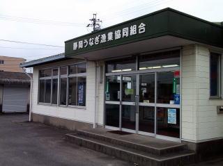 静岡うなぎ漁業協同組合 吉田売店