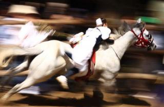 おまんと祭り流れる白馬