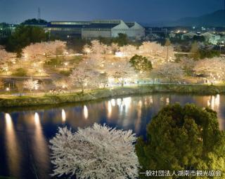 【2021年中止】湖南市さくらまつり