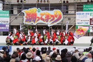 Odorikko Festival★28210ba2212025012