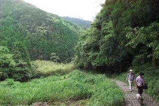 鹿ヶ瀬峠石畳道ハイキングコース